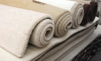 Latest Carpet Cleaning Trends